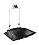 Duel Ramp Wheelchair Scales