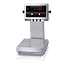 IQ Plus 2100 Digital Bench Scales
